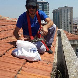 Bina Çatı Temizliği