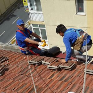 Çatı Şirketleri